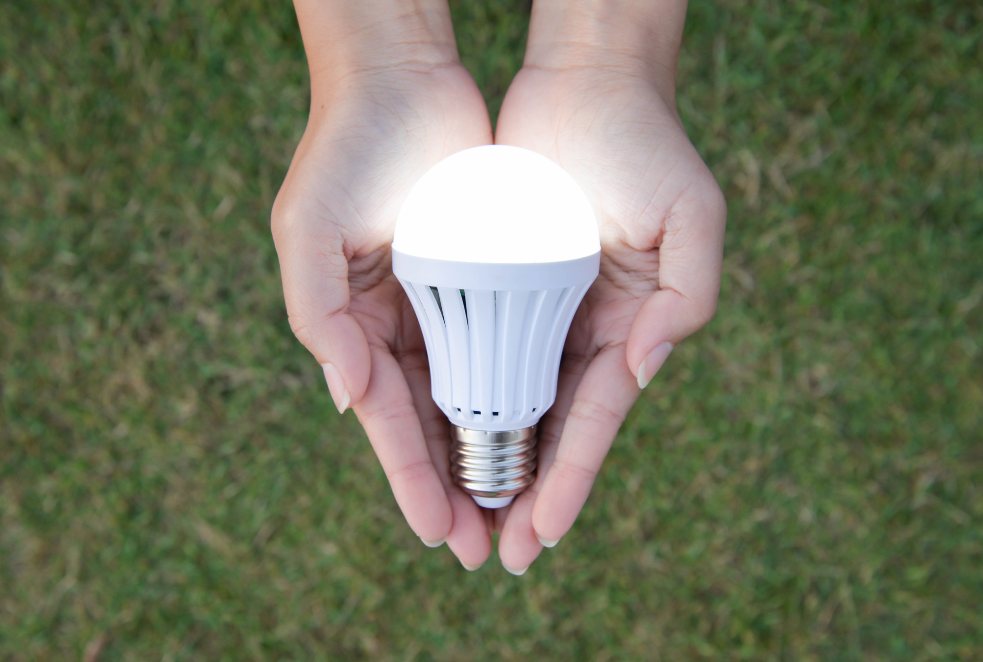 LED bulb in hand