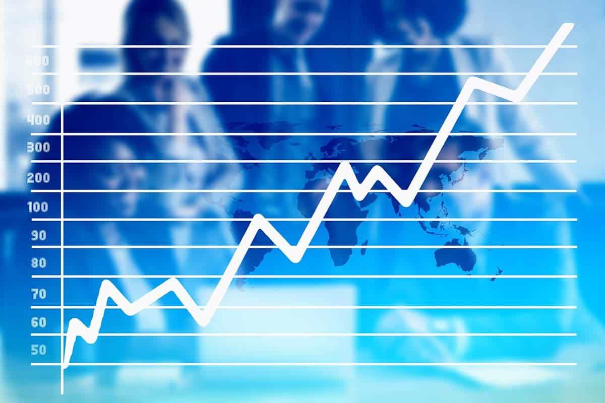 Growth Stock: Beginner's Guide